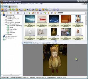 ACDSee Pro скачать бесплатно русская версия для windows 10