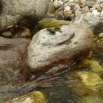 Фото 5. Камень в реку Слюдянке.